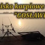 goslawice4